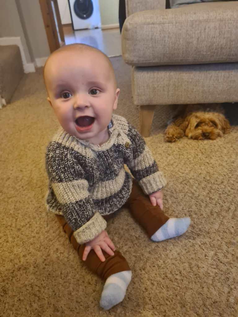 Teddy at 7 months.jpg